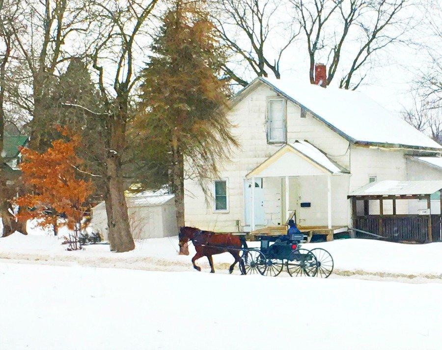Winter in beautiful Iowa-peppermillbnb-amish