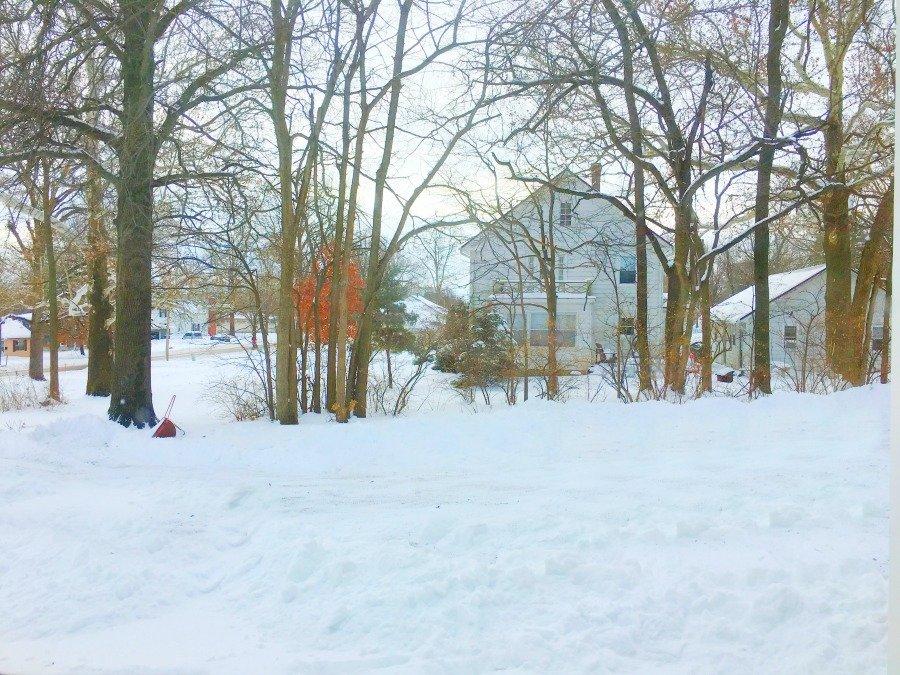 Winter in beautiful Iowa-peppermillbnb-neighbor